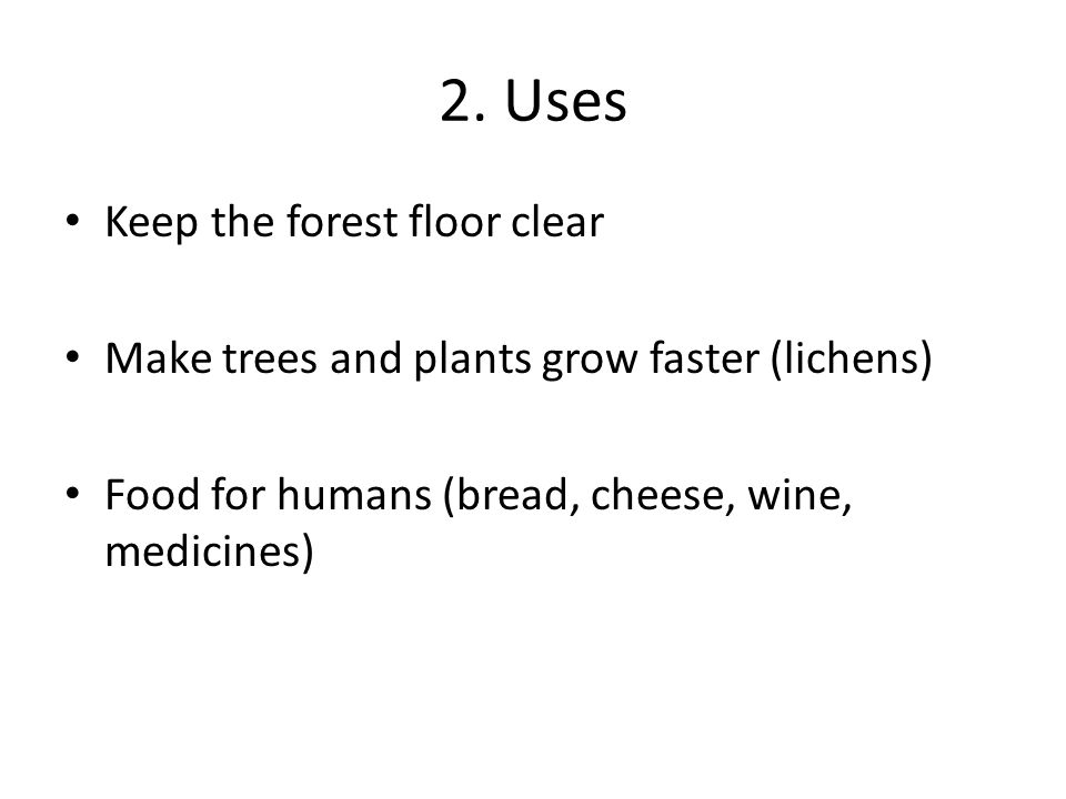 2. Uses Keep the forest floor clear Make trees and plants grow faster (lichens) Food for humans (bread, cheese, wine, medicines)