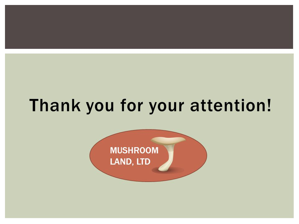 Thank you for your attention! MUSHROOM LAND, LTD