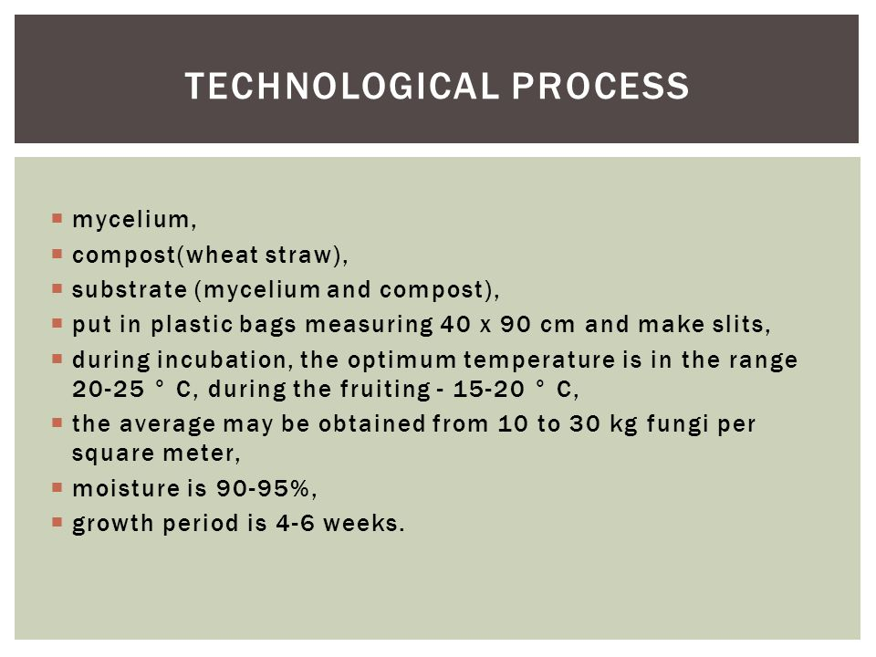  mycelium,  compost(wheat straw),  substrate (mycelium and compost),  put in plastic bags measuring 40 x 90 cm and make slits,  during incubation, the optimum temperature is in the range 20-25 ° C, during the fruiting - 15-20 ° C,  the average may be obtained from 10 to 30 kg fungi per square meter,  moisture is 90-95%,  growth period is 4-6 weeks.