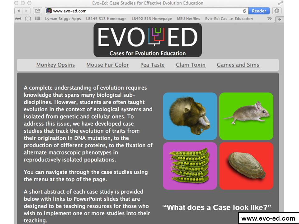"""What does a Case look like?"" www.evo-ed.com"