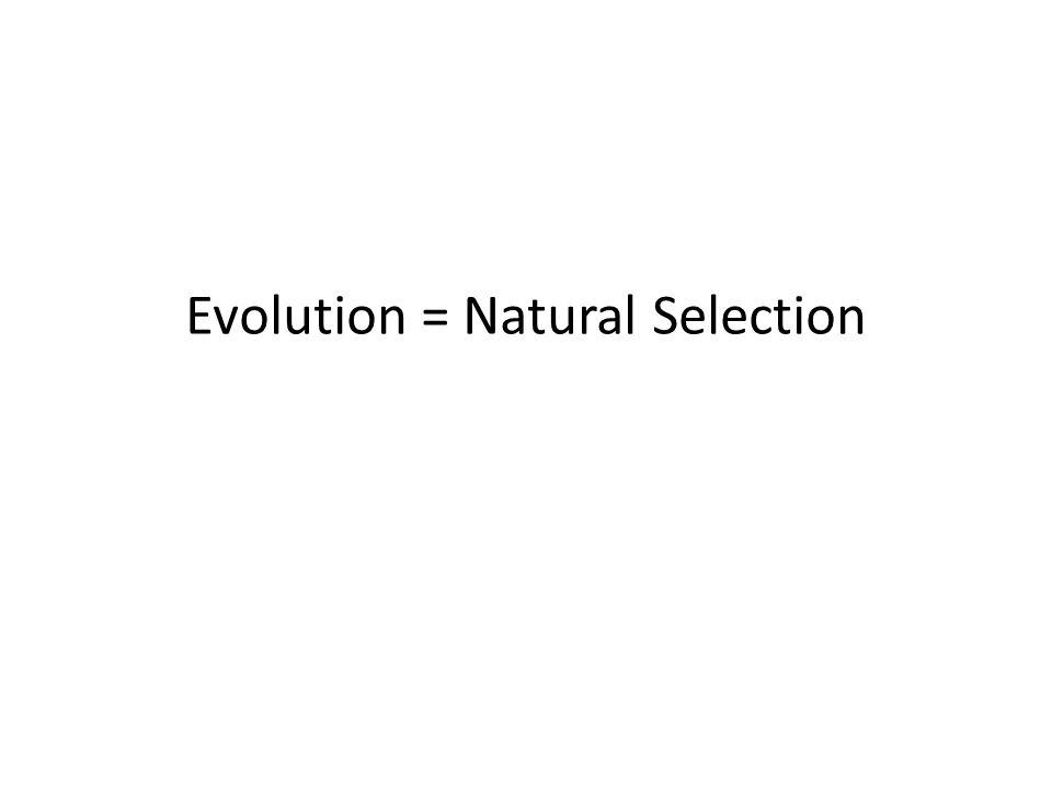 Evolution = Natural Selection