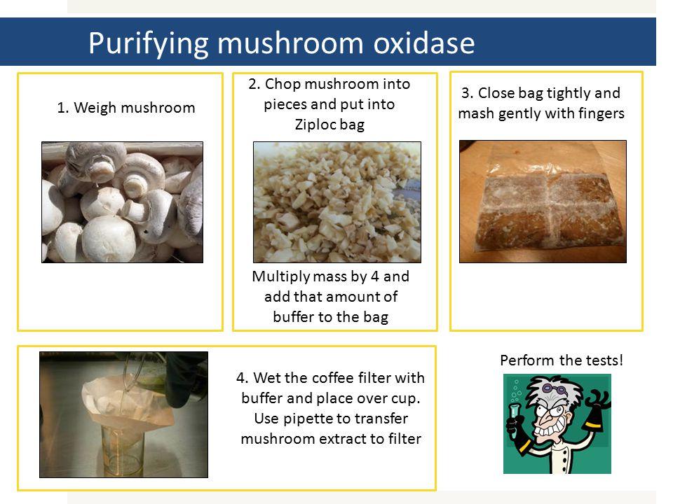 1. Weigh mushroom 2.