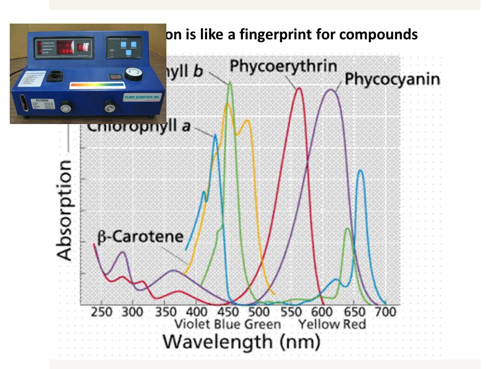 Light absorption is like a fingerprint for compounds