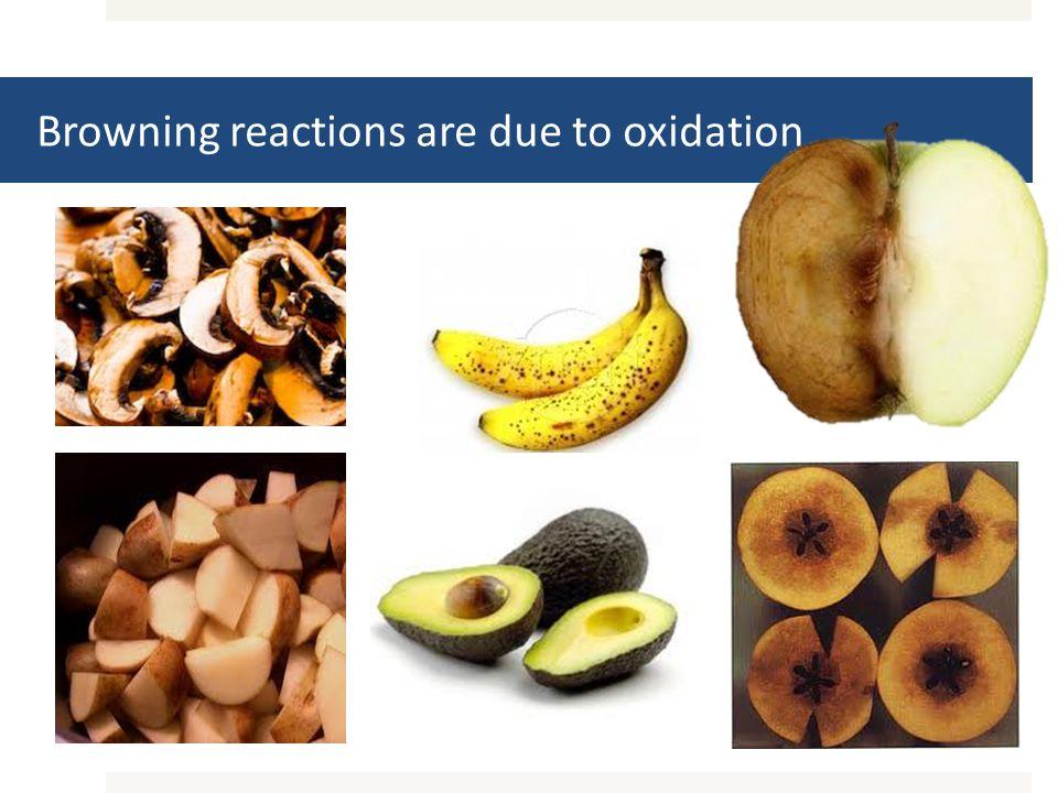 Catechol Colorless + ½O 2 Benzoquinone Yellow-Brown + H 2 O Phenol Oxidase + Antioxidant.