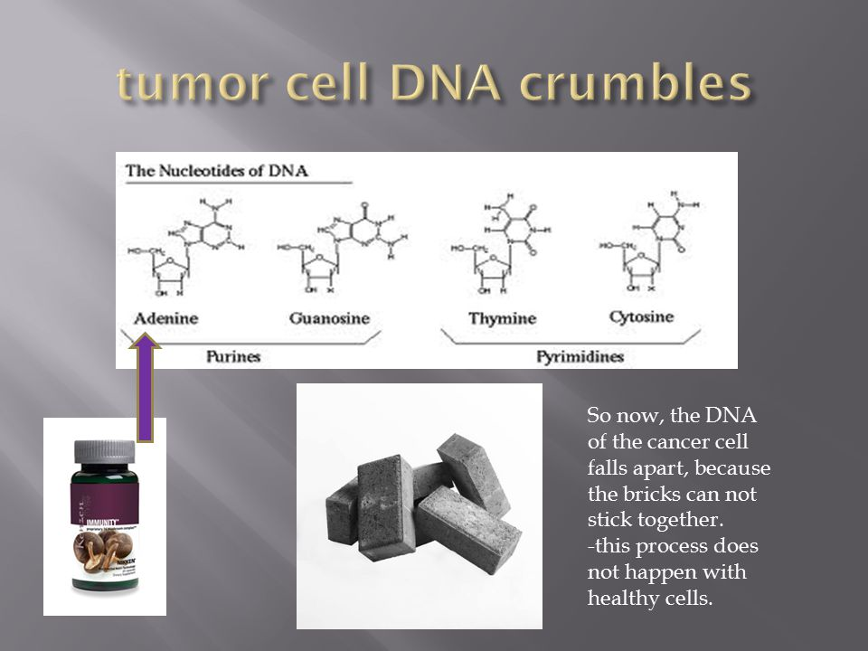 cordyceps t gct agSo now, the DNA of the cancer cell falls apart, because the bricks can not stick together.