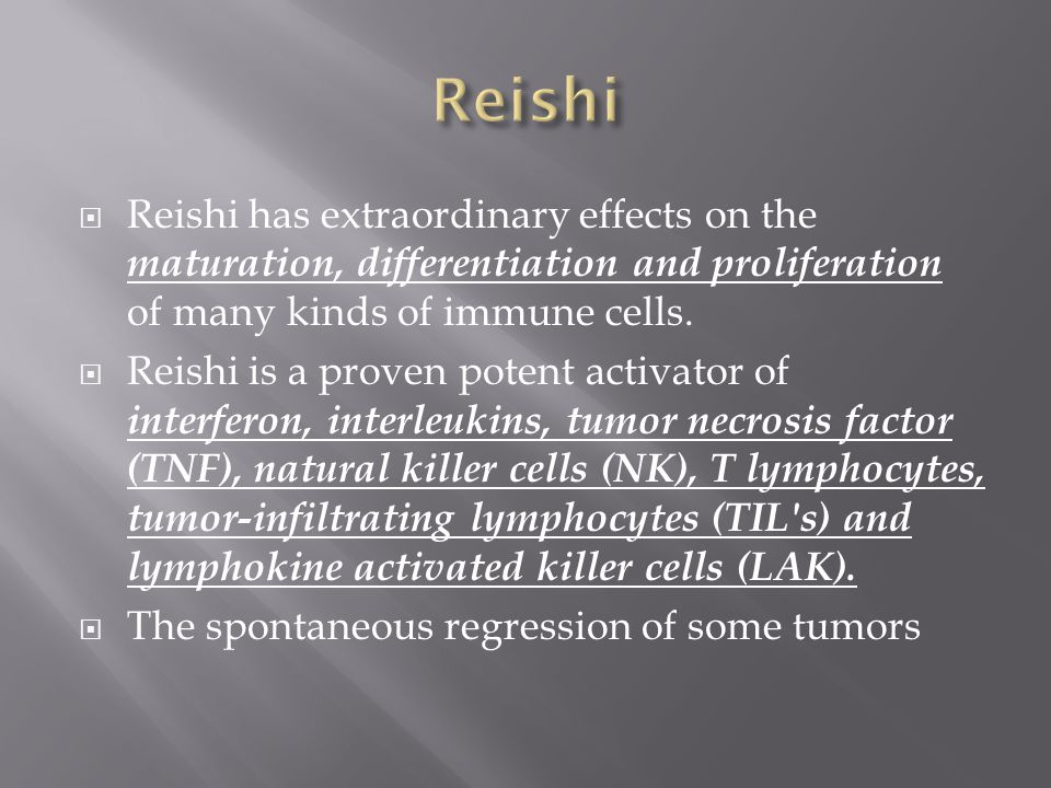  Reishi has extraordinary effects on the maturation, differentiation and proliferation of many kinds of immune cells.