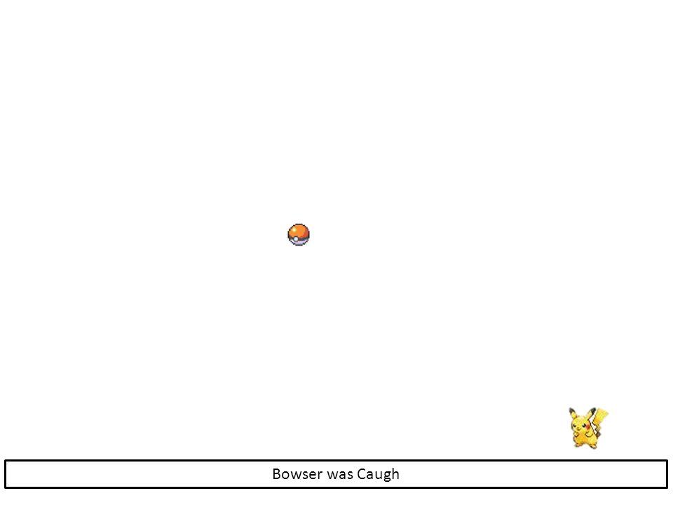 Bowser was Caugh