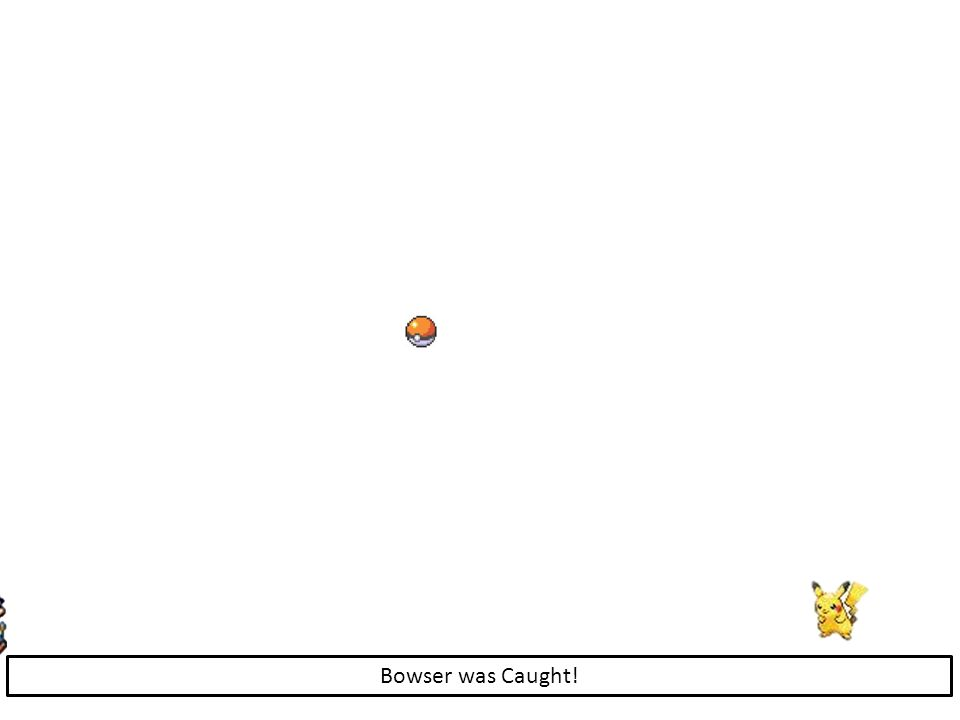 Bowser was Caught!