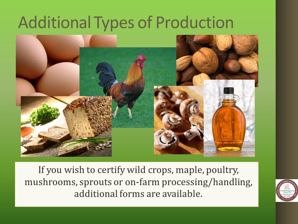 Additional Types of Production If you wish to certify wild crops, maple, poultry, mushrooms, sprouts or on-farm processing/handling, additional forms