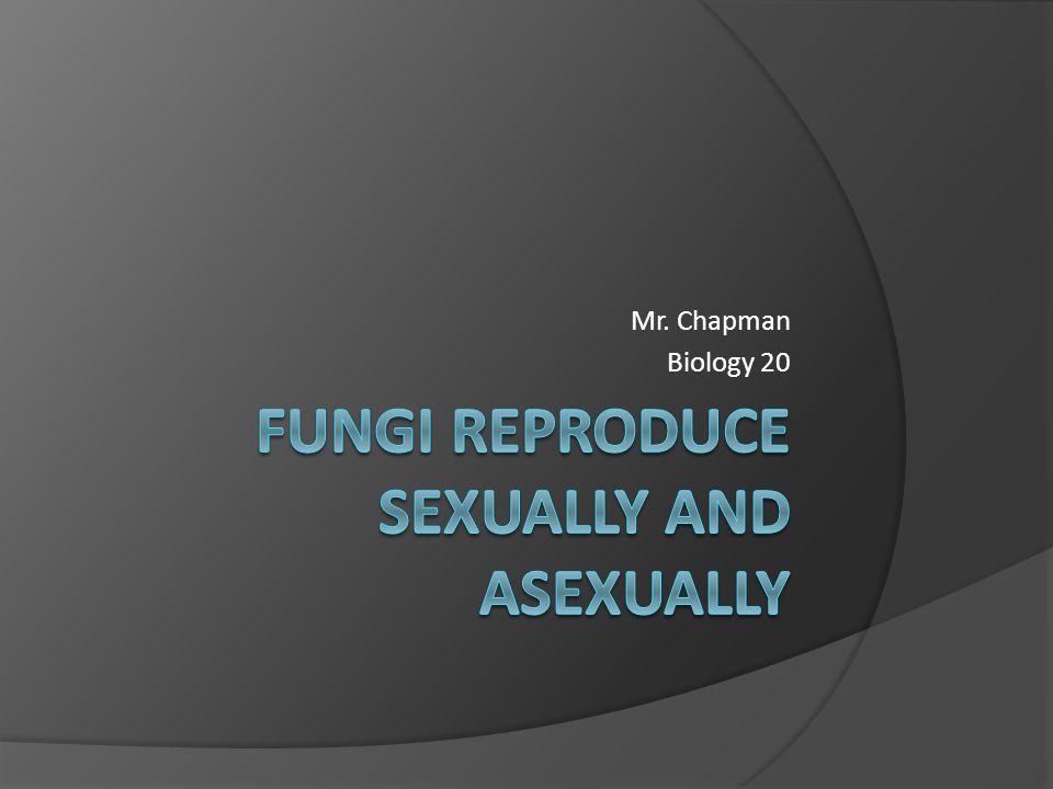 Mr. Chapman Biology 20