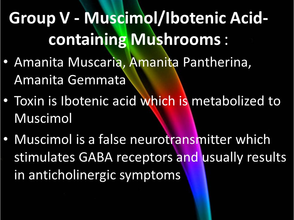 Group V - Muscimol/Ibotenic Acid- containing Mushrooms : Amanita Muscaria, Amanita Pantherina, Amanita Gemmata Toxin is Ibotenic acid which is metabolized to Muscimol Muscimol is a false neurotransmitter which stimulates GABA receptors and usually results in anticholinergic symptoms