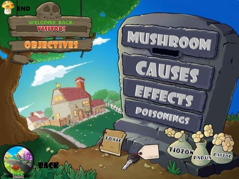 Group II Monomethylhydrazine containing Mushrooms :