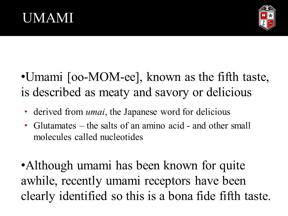 UMAMI Umami [oo-MOM-ee], known as the fifth taste, is described as meaty and savory or delicious derived from umai, the Japanese word for delicious Gl