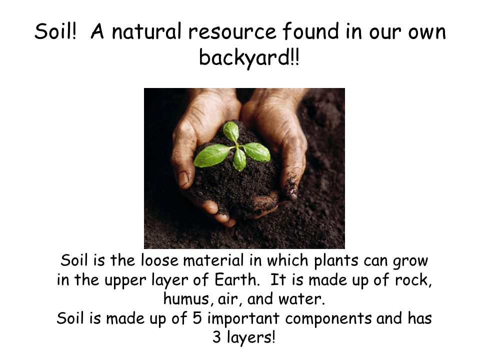 The 5 Components of Soil Read these with me! Humus Sand Silt Clay Rock
