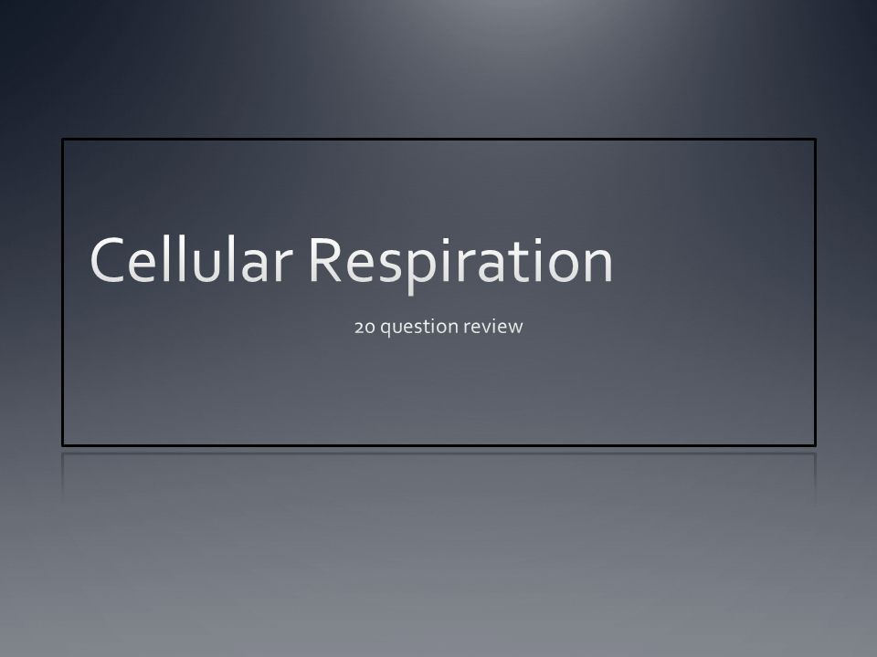 Question 6 What are the Three pathways of cellular respiration?