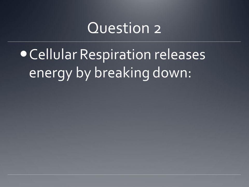 Answer C) Pyruvic Acid http://4.bp.blogspot.com/_gfJNTQHDtXs/TGRQcZR4eGI/AAAAAAAAAkI/5h- eWnf3oz4/s640/tropical_island_screensaver1.jpg