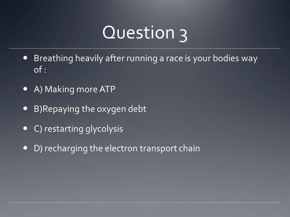 Answer C) Anaerobic Respiration