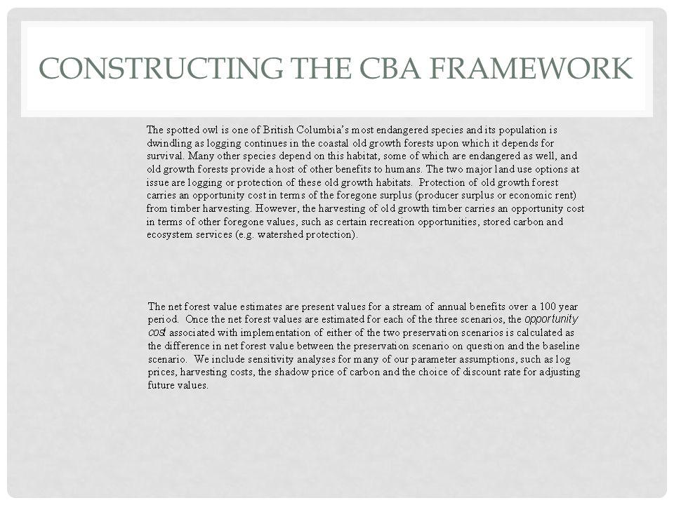 CONSTRUCTING THE CBA FRAMEWORK