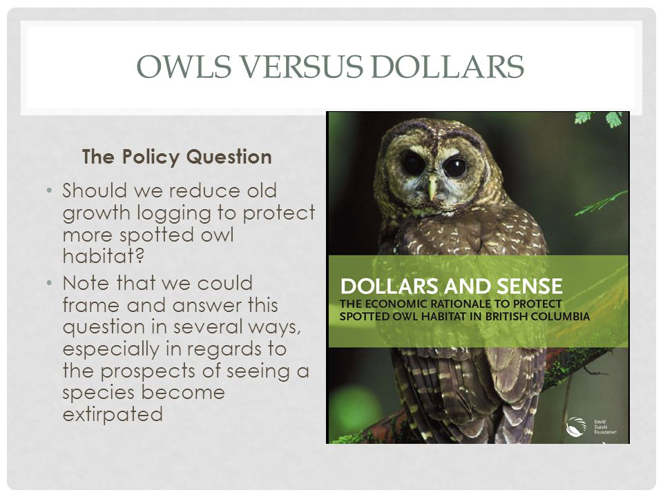 OWLS VERSUS DOLLARS The Policy Question Should we reduce old growth logging to protect more spotted owl habitat? Note that we could frame and answer t