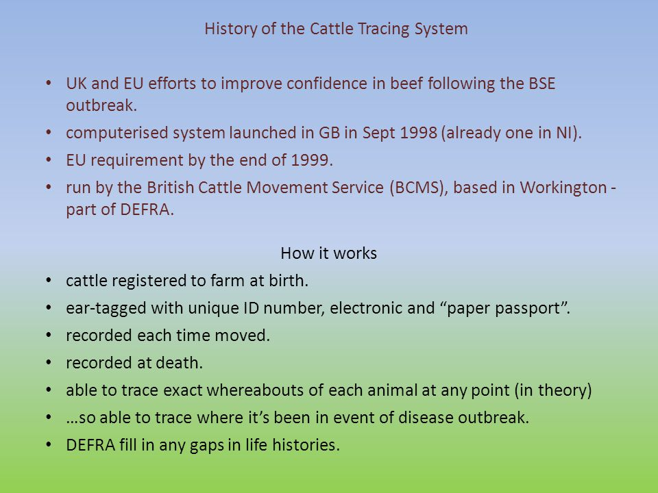 History of the Cattle Tracing System UK and EU efforts to improve confidence in beef following the BSE outbreak.