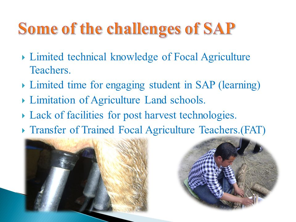 LLimited technical knowledge of Focal Agriculture Teachers. LLimited time for engaging student in SAP (learning) LLimitation of Agriculture Land