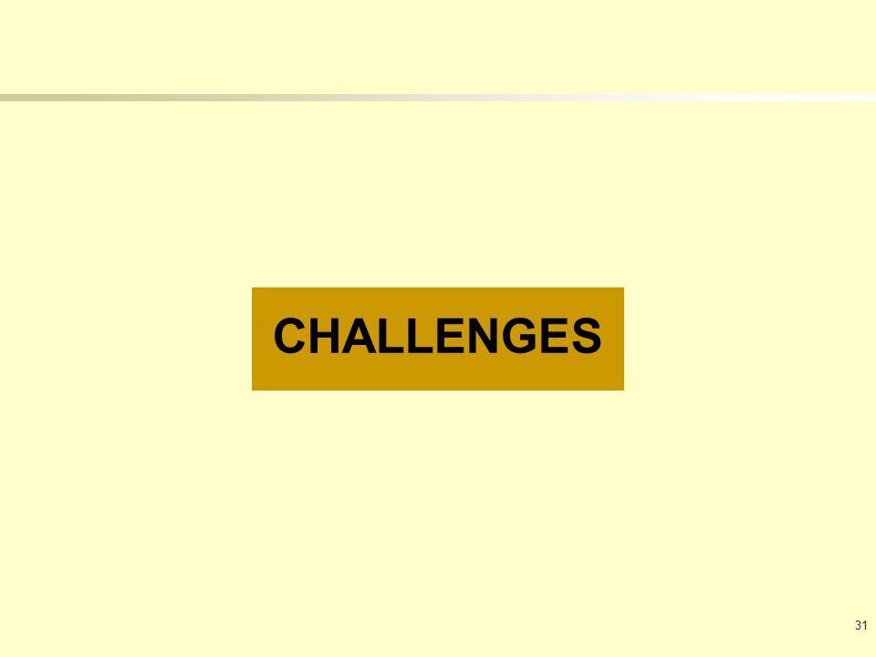 CHALLENGES 31