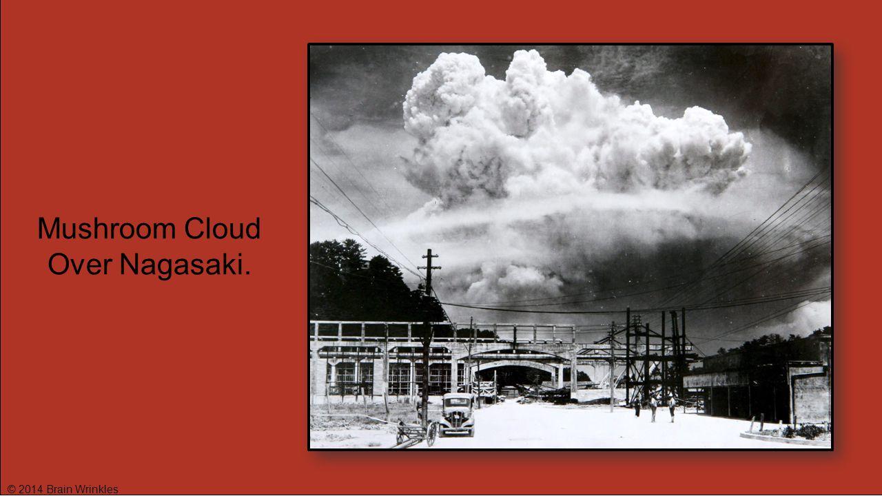 © 2014 Brain Wrinkles Mushroom Cloud Over Nagasaki.