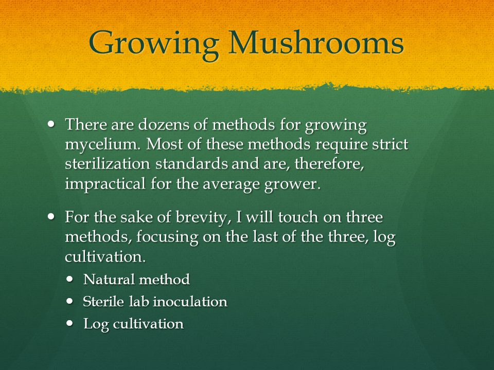 Growing Mushrooms There are dozens of methods for growing mycelium.