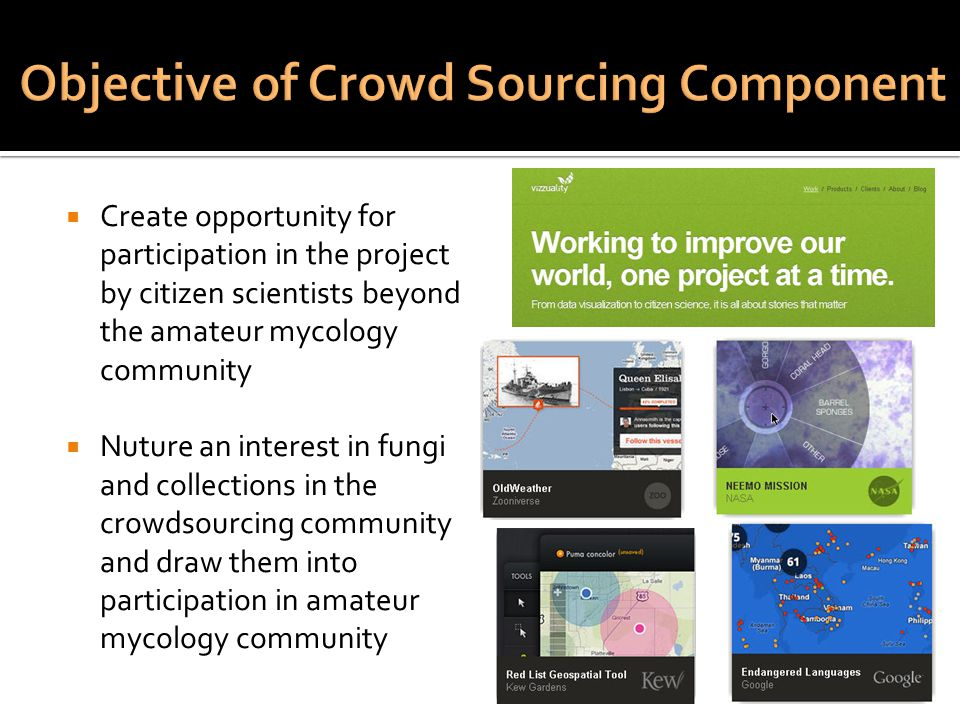  Create opportunity for participation in the project by citizen scientists beyond the amateur mycology community  Nuture an interest in fungi and collections in the crowdsourcing community and draw them into participation in amateur mycology community