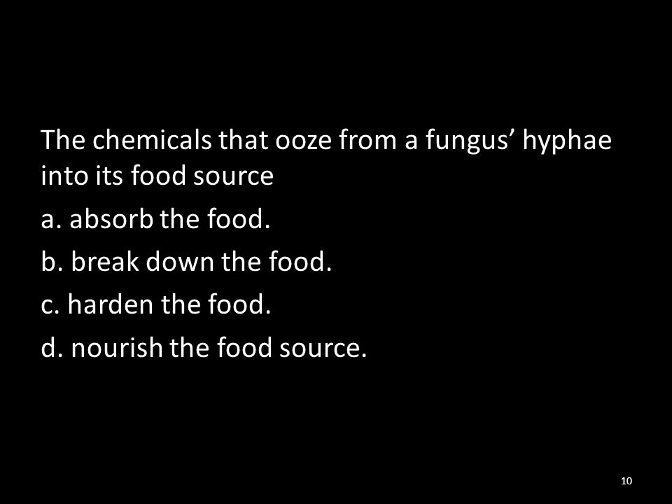 The chemicals that ooze from a fungus' hyphae into its food source a.
