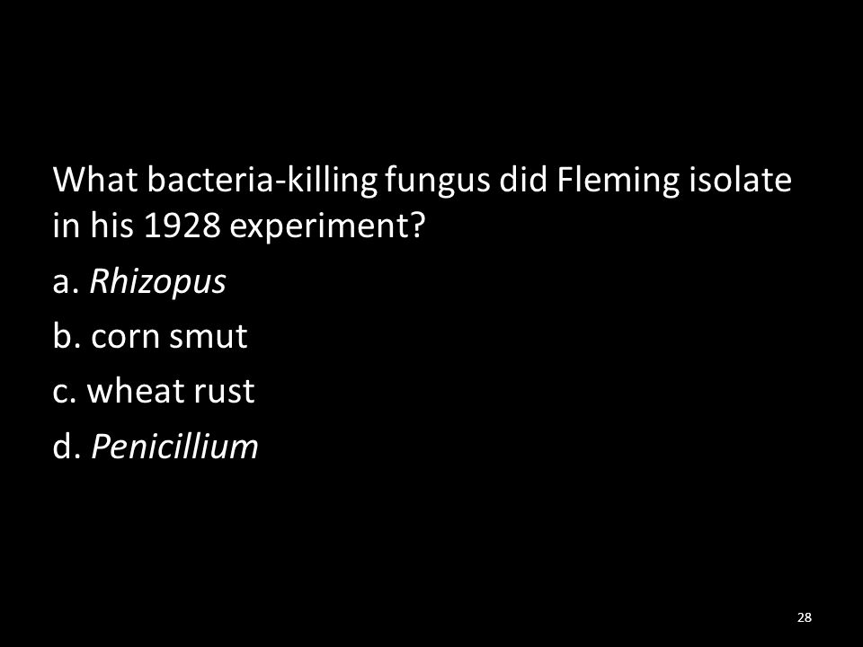 What bacteria-killing fungus did Fleming isolate in his 1928 experiment.