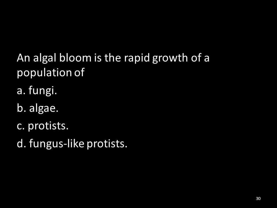 An algal bloom is the rapid growth of a population of a.