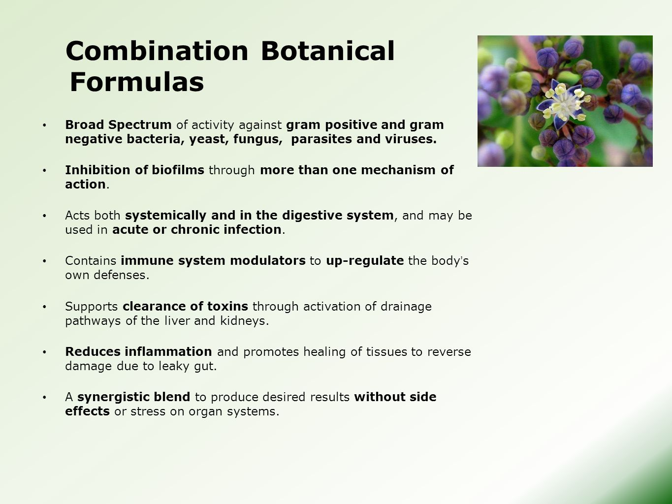 Combination Botanical Formulas Broad Spectrum of activity against gram positive and gram negative bacteria, yeast, fungus, parasites and viruses.