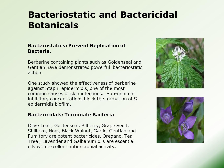 Bacterostatics: Prevent Replication of Bacteria.