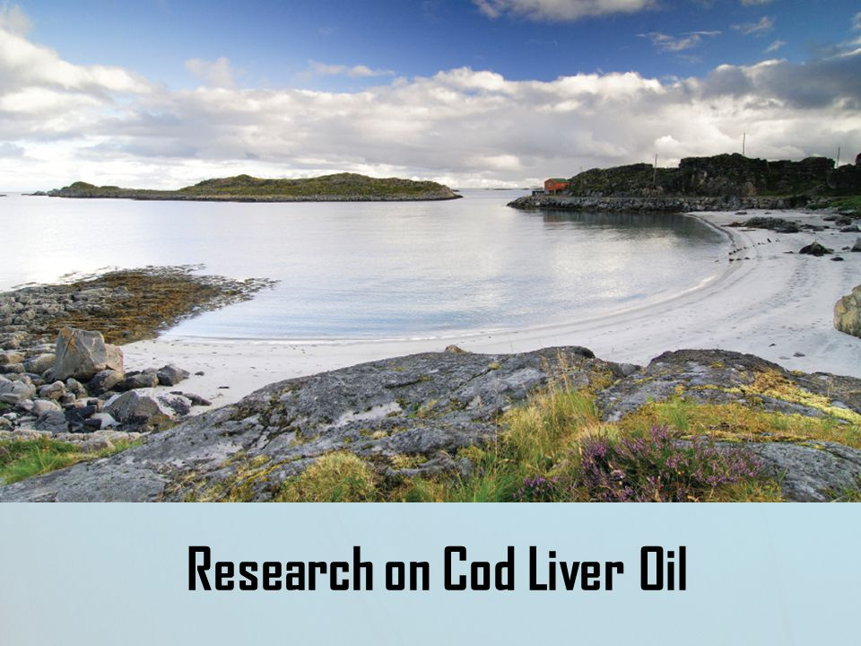 Research on Cod Liver Oil