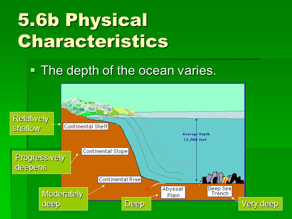 5.6b Physical Characteristics  The depth of the ocean varies. Relatively shallow Progressively deepens Moderately deep Deep Very deep