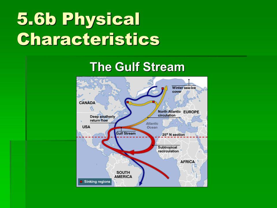5.6b Physical Characteristics The Gulf Stream