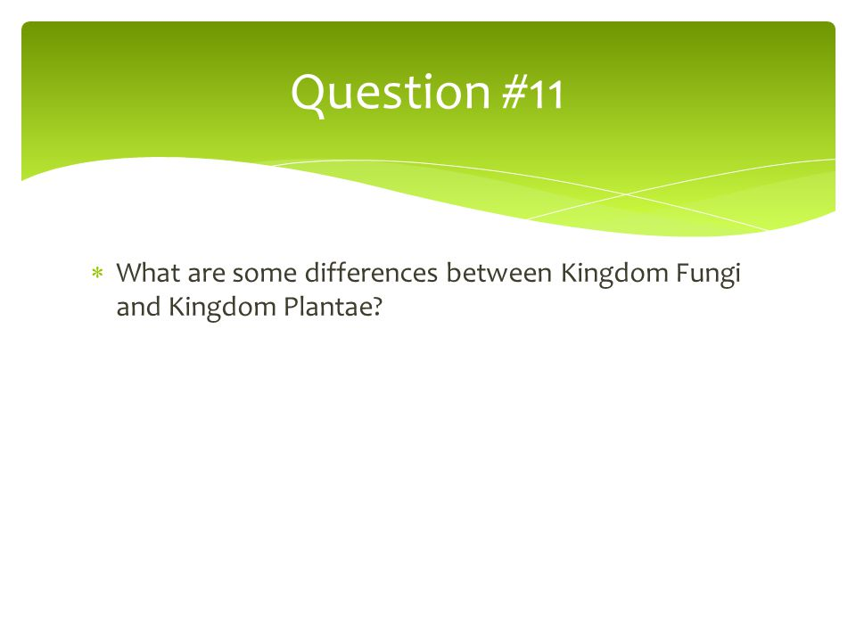  What are some differences between Kingdom Fungi and Kingdom Plantae? Question #11