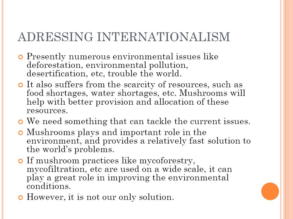 ADRESSING INTERNATIONALISM Presently numerous environmental issues like deforestation, environmental pollution, desertification, etc, trouble the worl