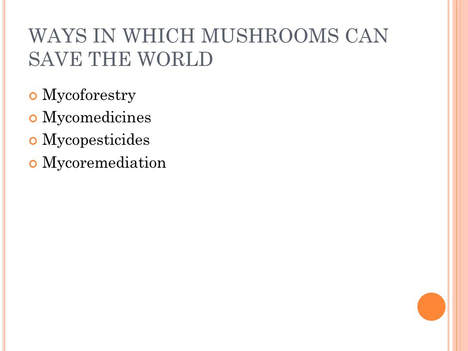 MYCOFORESTRY Mycoforestry is the employment of fungi to sustain forest communities.