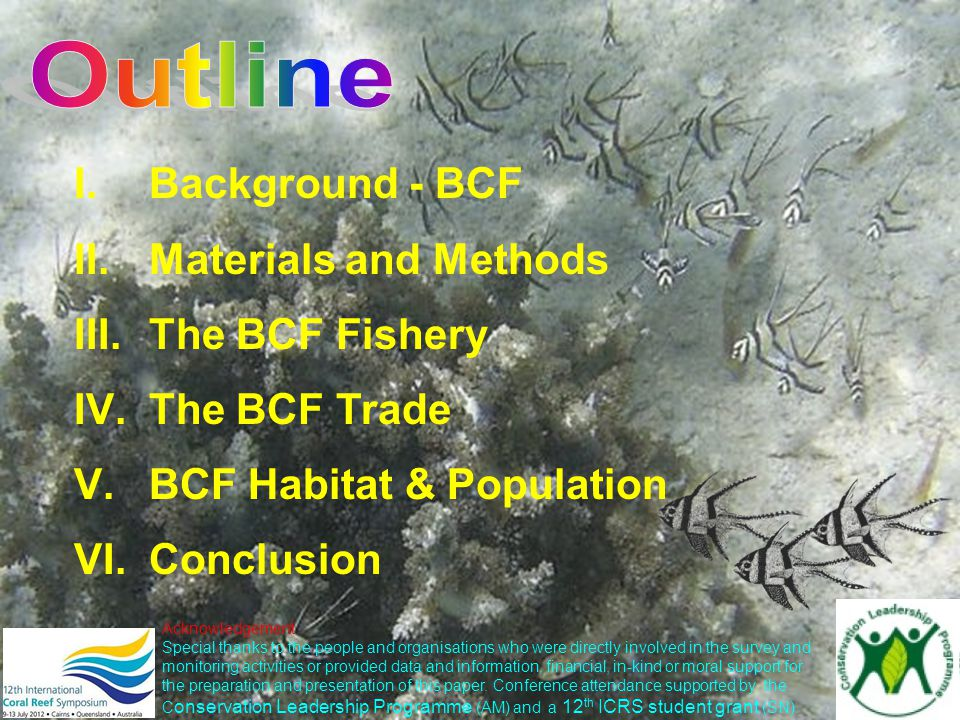 I.Background - BCF II.Materials and Methods III.The BCF Fishery IV.The BCF Trade V.BCF Habitat & Population VI.Conclusion Acknowledgement Special than