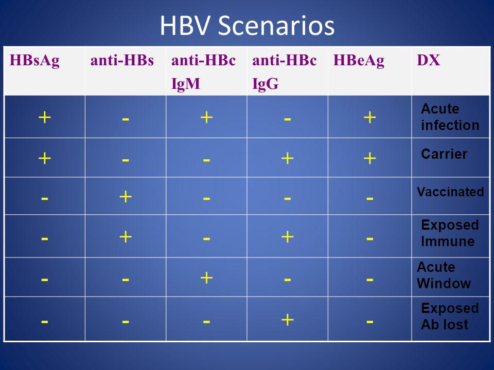 HBV Scenarios HBsAganti-HBsanti-HBc IgM anti-HBc IgG HBeAgDX +-+-+ +--++ -+--- -+-+- --+-- ---+- Acute infection Carrier Vaccinated Exposed Immune Acute Window Exposed Ab lost
