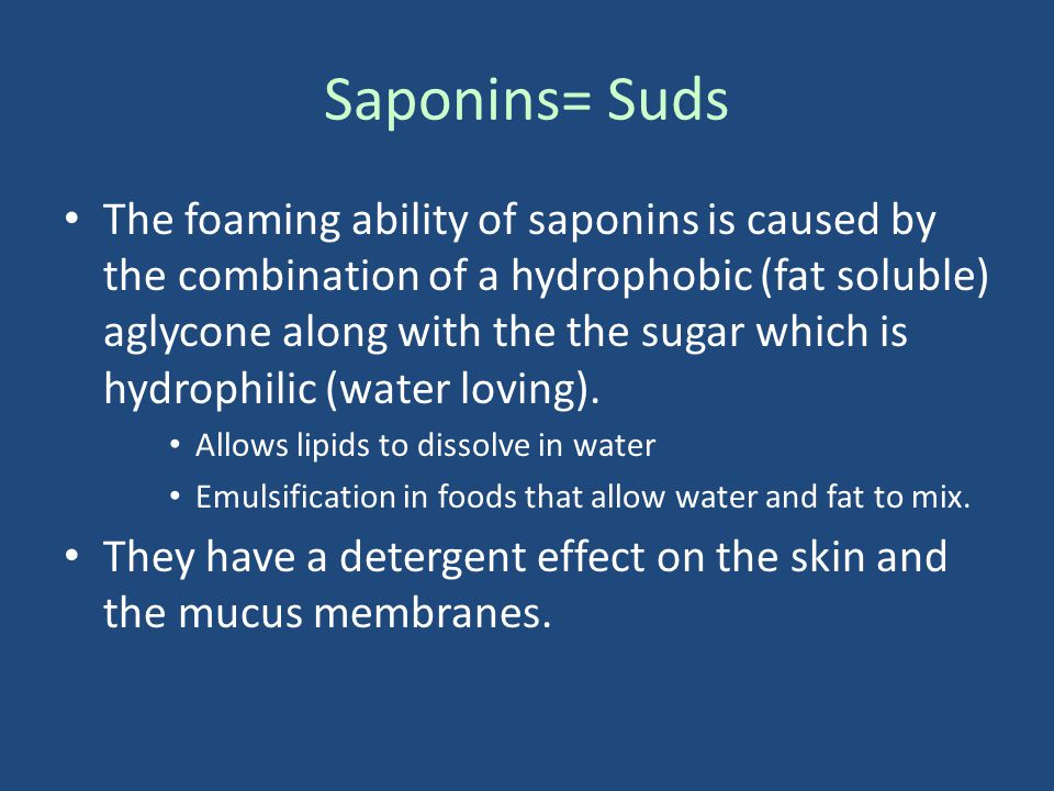 Saponins= Suds The foaming ability of saponins is caused by the combination of a hydrophobic (fat soluble) aglycone along with the the sugar which is