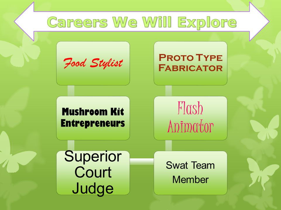Food Stylist Mushroom Kit Entrepreneurs Superior Court Judge Swat Team Member Flash Animator Proto Type Fabricator