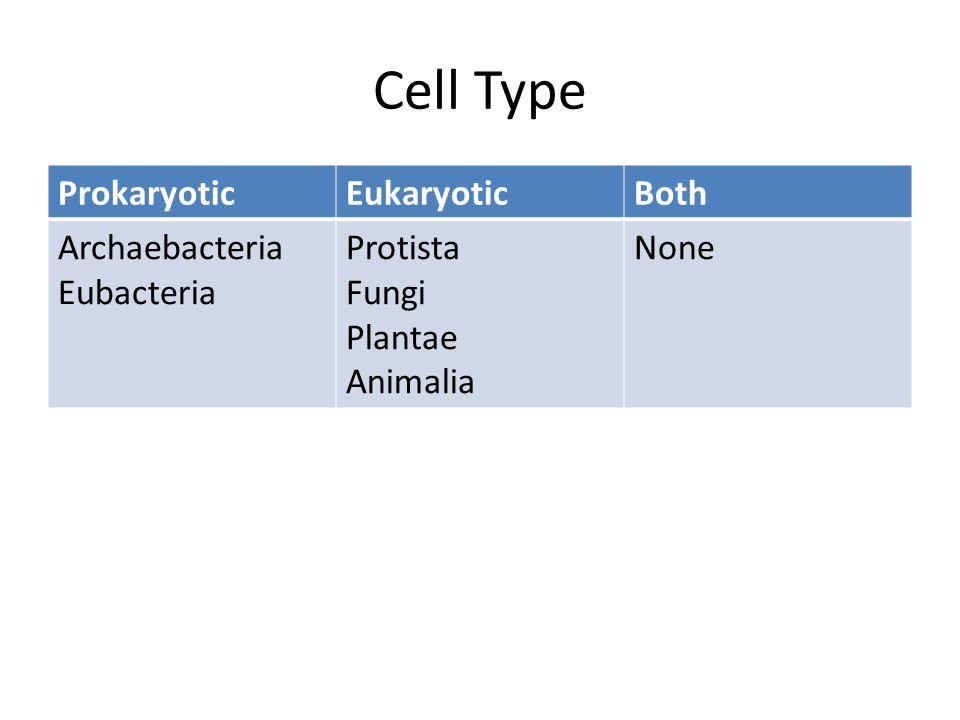 Cell Type ProkaryoticEukaryoticBoth Archaebacteria Eubacteria Protista Fungi Plantae Animalia None
