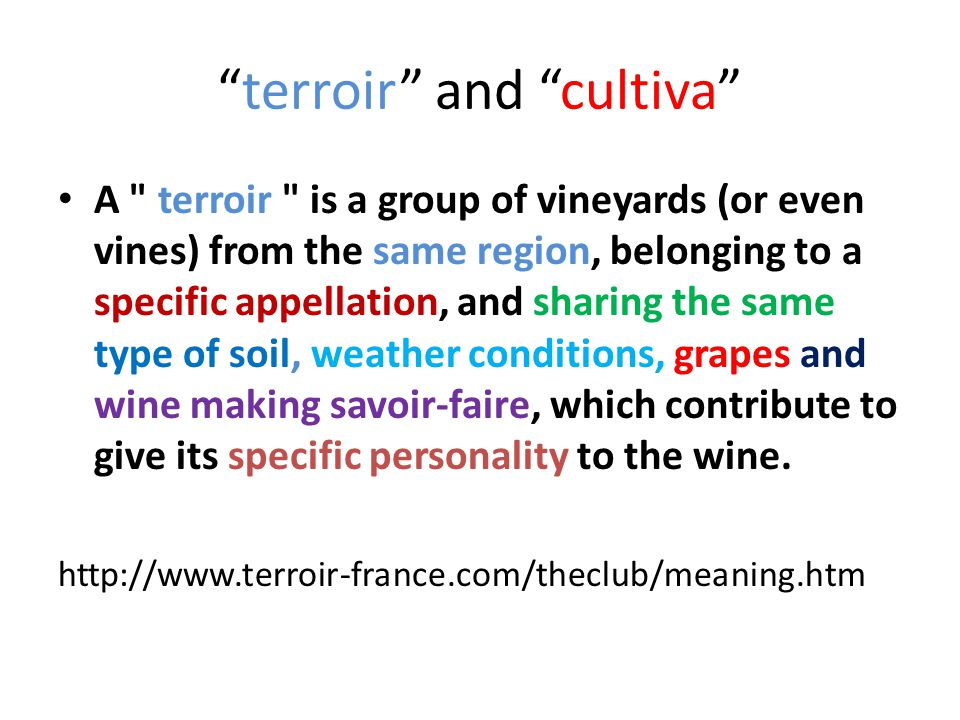 terroir and cultiva A terroir is a group of vineyards (or even vines) from the same region, belonging to a specific appellation, and sharing the same type of soil, weather conditions, grapes and wine making savoir-faire, which contribute to give its specific personality to the wine.