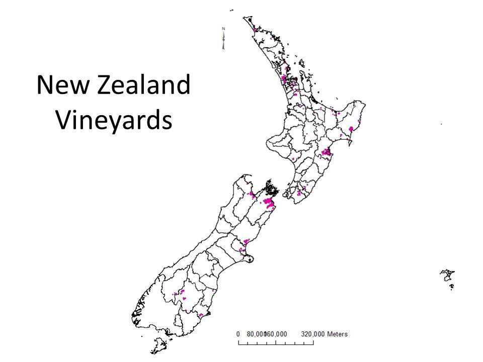 New Zealand Vineyards