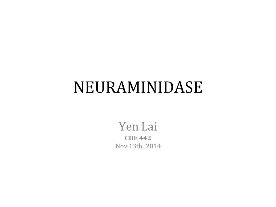 NEURAMINIDASE Yen Lai CHE 442 Nov 13th, 2014