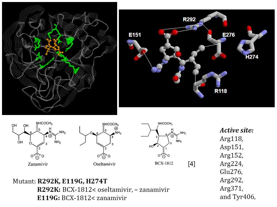 Active site: Arg118, Asp151, Arg152, Arg224, Glu276, Arg292, Arg371, and Tyr406, [4] R292 E276E151 R118 H274 Mutant: R292K, E119G, H274T R292K: BCX-1812< oseltamivir, = zanamivir E119G: BCX-1812< zanamivir