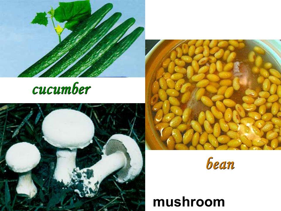 cucumber bean mushroom